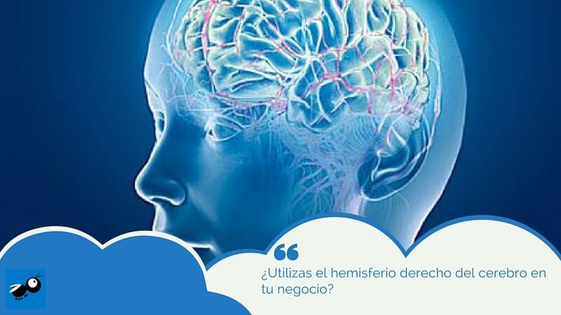 ¿Utilizas el hemisferio derecho del cerebro en tu negocio?