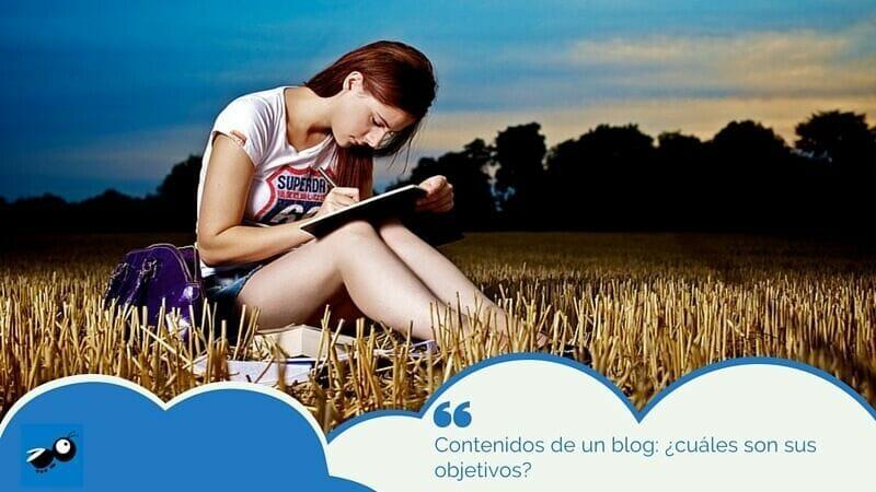 contenidos de un blog