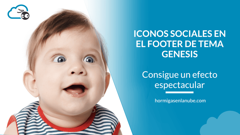 simple social iconos en el footer