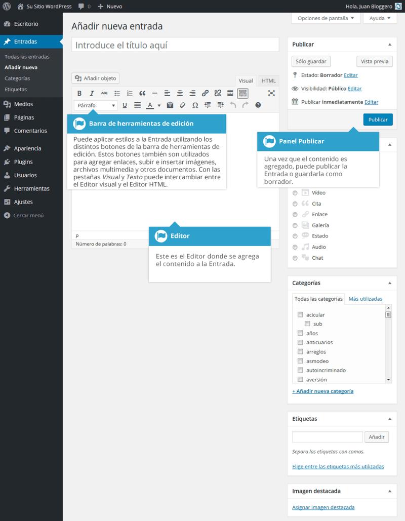 Vista de nueva entrada en WordPress