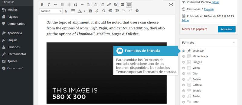 Formatos de Entrada al agregar contenido