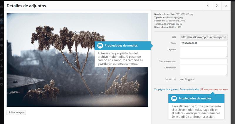Biblioteca-multimedia-editar-propiedades