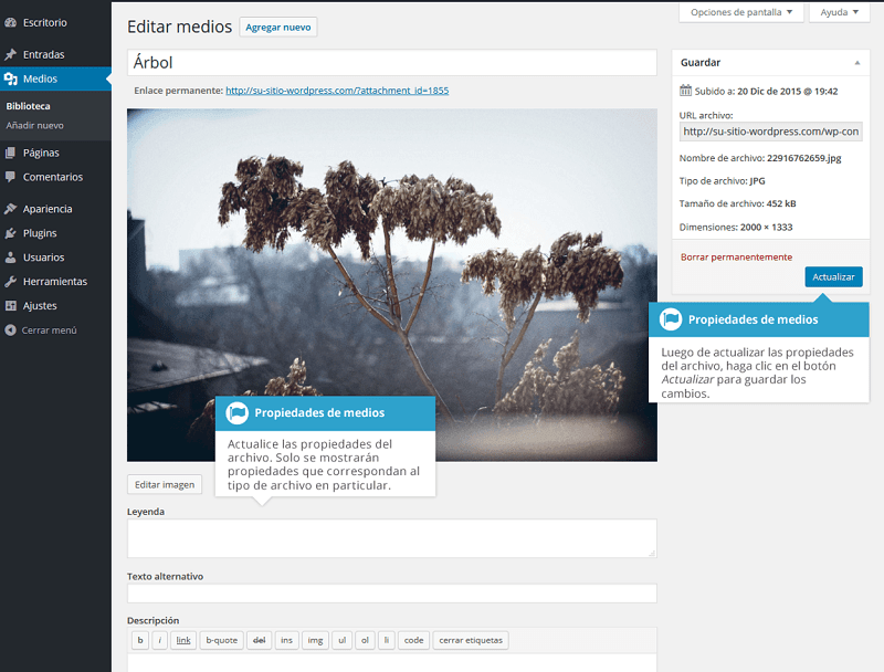 Biblioteca-multimedia-propiedades-medios