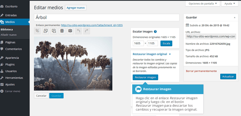 Biblioteca-multimedia-restaurar-imagen