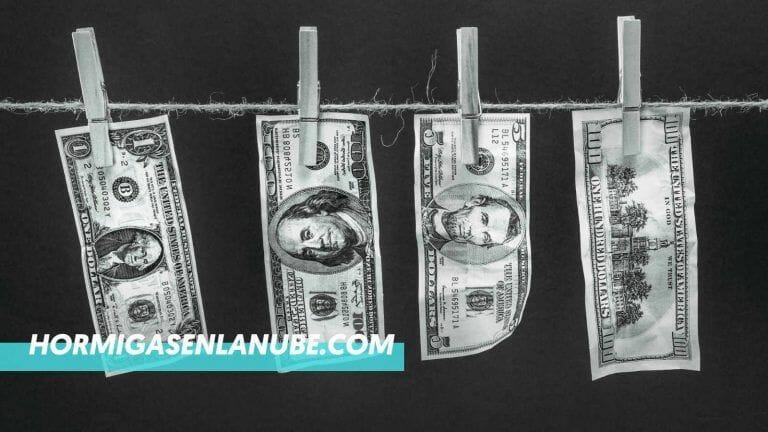 ¿Se puede ganar dinero con Webs de nicho?