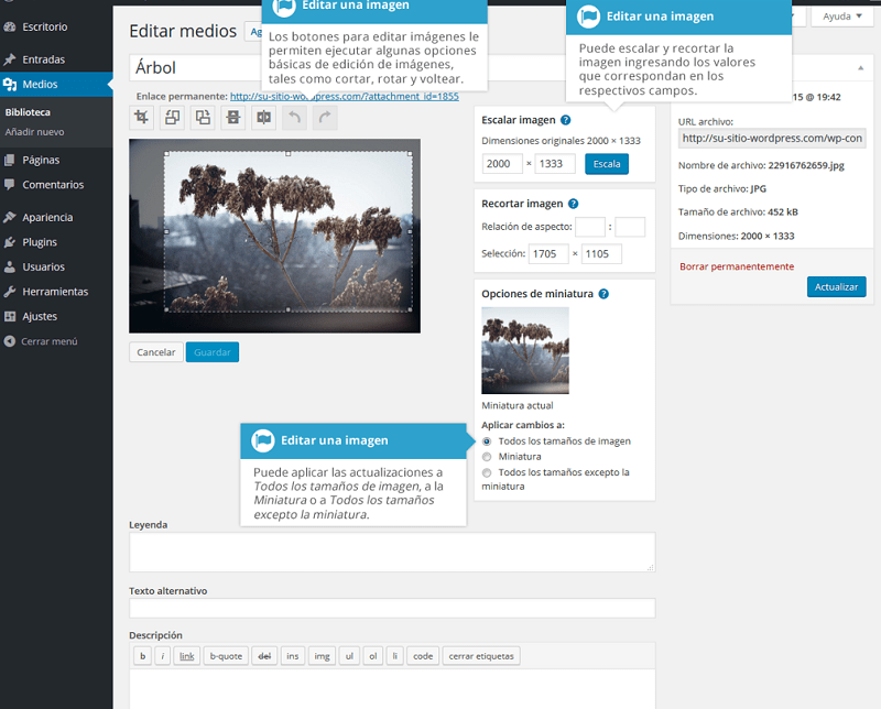 Biblioteca-multimedia-editar-campos-imagen