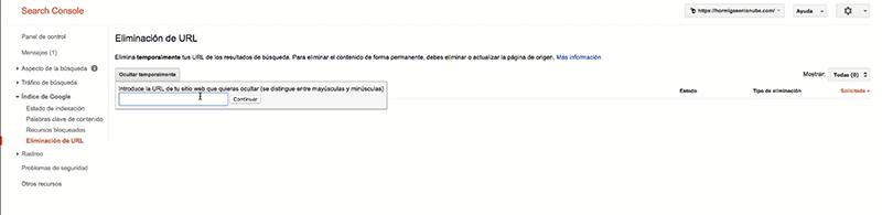 Google-Search-Console-eliminacion-url