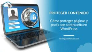 Proteger posts con contraseña